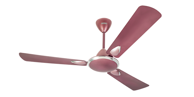 Usha Fans Online - Best Fans Price in India | Usha com